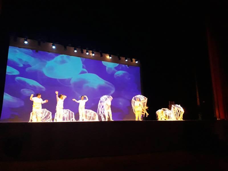 19ª Mostra de Dança foi ovacionada pelo público