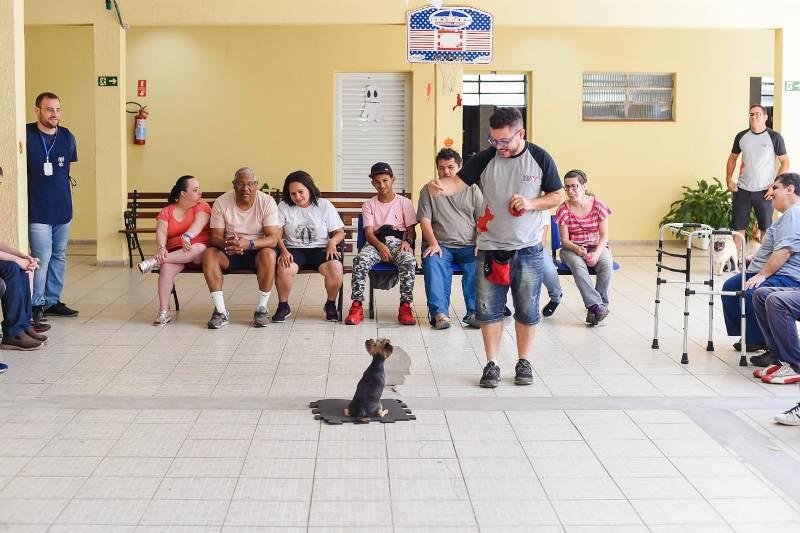 Alunos da APAE têm contato com animais adestrados